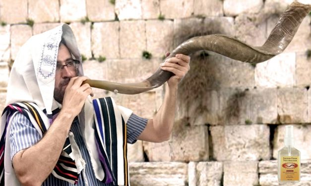 How to clean a shofar